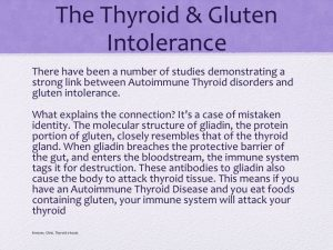 the thyroid and gluten intolerance slide