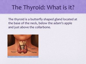 Thyroid slide what is it?