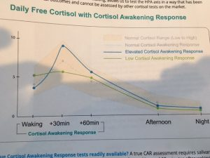 cortisol hormone test example